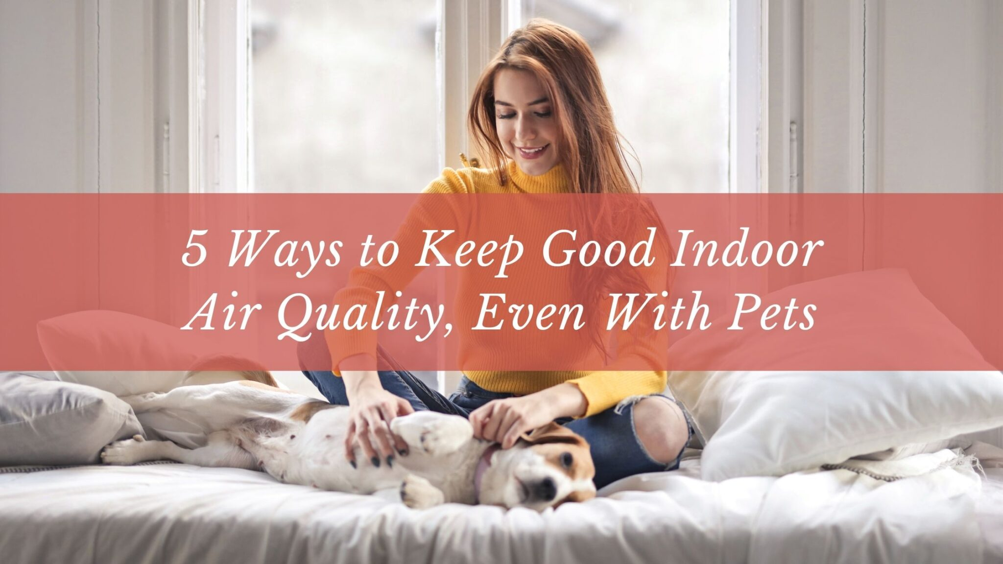 5 Ways to Keep Good Indoor Air Quality, Even With Pets